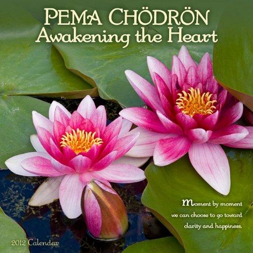"Pema Chodron 2012 Mini Calendar (7"" x 7"") (9781602374546) by Pema Chodron"