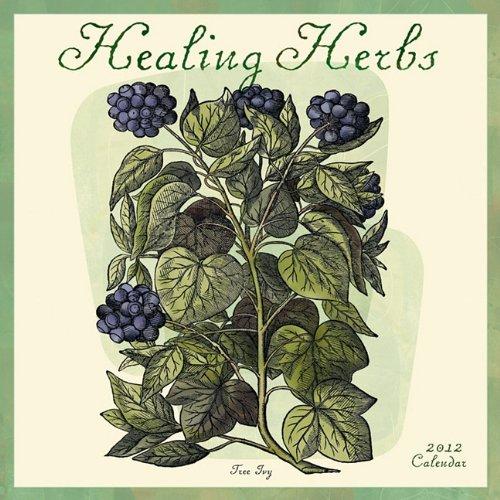 9781602374744: Healing Herbs 2012 Wall Calendar