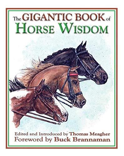 9781602390966: The Gigantic Book of Horse Wisdom