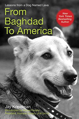 9781602397439: From Baghdad to America: Life after War for a Marine and His Rescued Dog