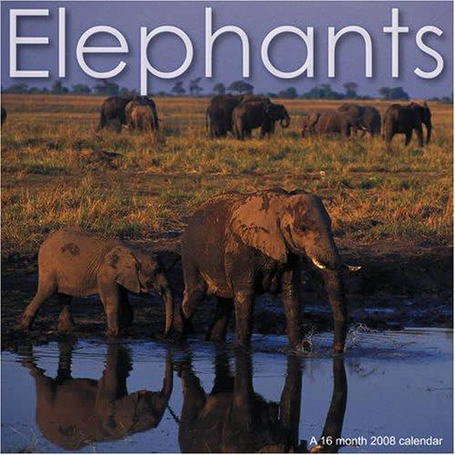 9781602541139: Elephants (Calendrier 2008)