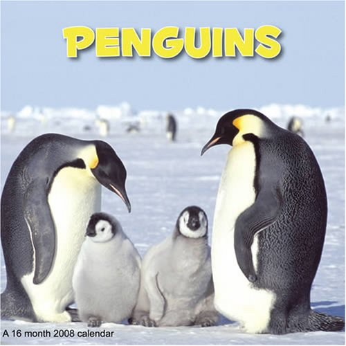 9781602541276: Penguins 2008 Wall Calendar