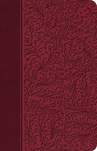 9781602550728: Biblia Clásica Edición Especial: Rubi (Spanish Edition)