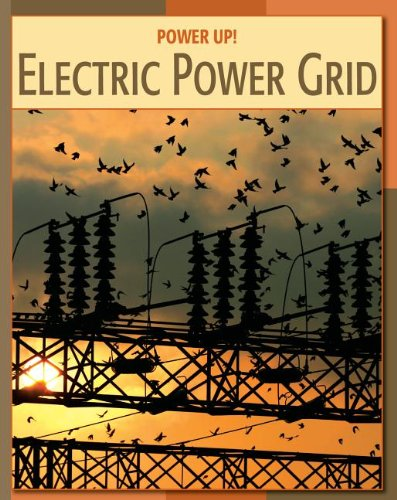 9781602791770: Electric Power Grid Electric Power Grid (Power Up!)