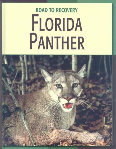 9781602793163: Florida Panther (Road to Recovery (Library))