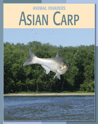 9781602793453: Asian Carp Asian Carp (Animal Invaders)