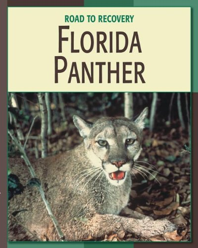9781602795570: Florida Panther (Road to Recovery (eBook))