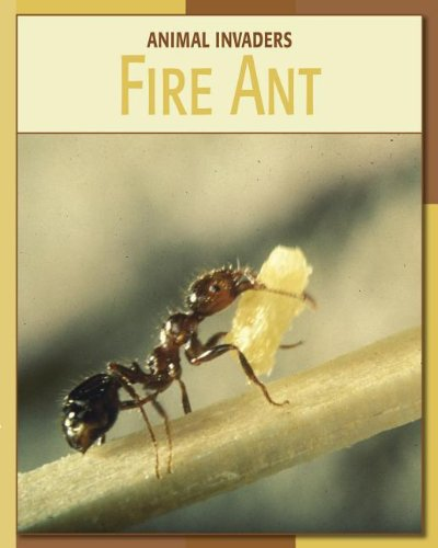 9781602795693: Fire Ant (Animal Invaders)