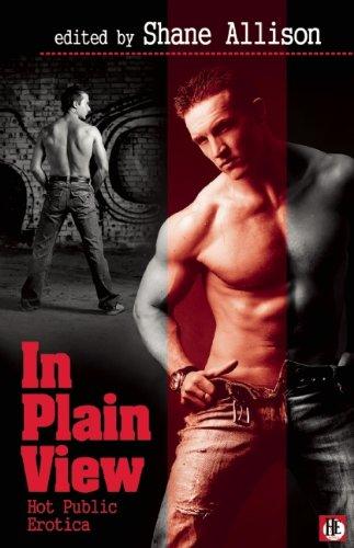 In Plain View: Gay Public Sex: Shane Allison