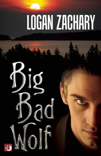 9781602828902: Big Bad Wolf