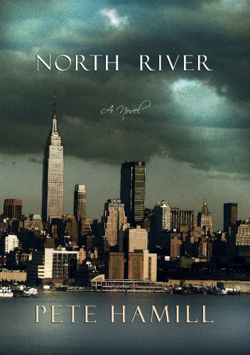 9781602850255: North River: A novel