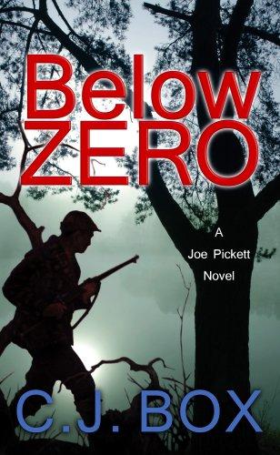 9781602855045: Below Zero (Platinum Mystery)
