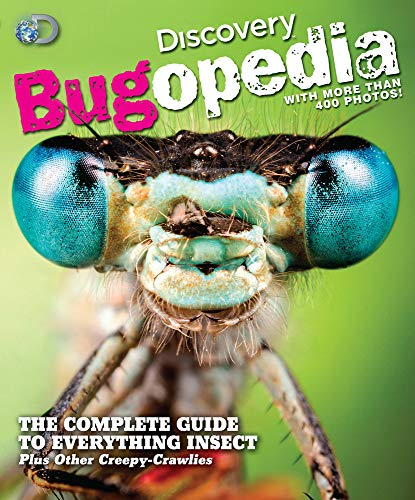 9781603209885: Discovery Bugopedia: The Complete Guide to Everything Insect Plus Other Creepy-Crawlies