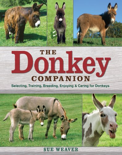9781603420389: The Donkey Companion: Selecting, Training, Breeding, Enjoying & Caring for Donkeys