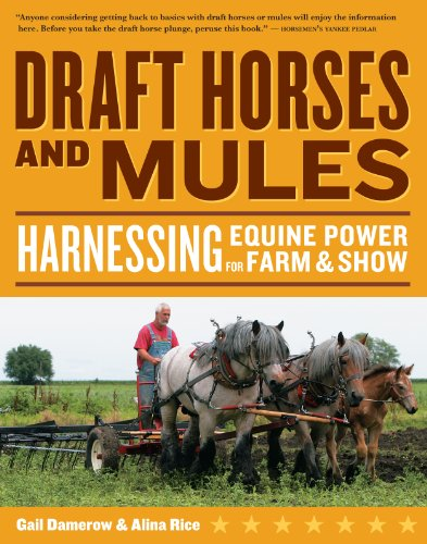 Draft Horses and Mules: Harnessing Equine Power for Farm & Show: Harnessing Equine Power for ...