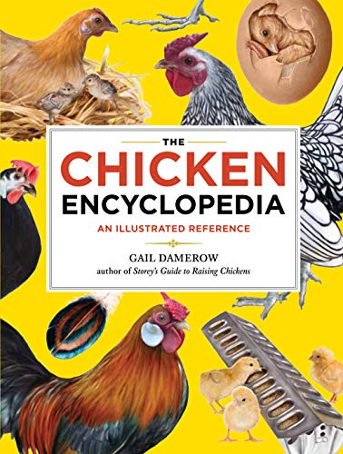 9781603425612: The Chicken Encyclopedia: An Illustrated Reference