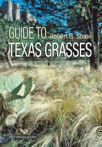 9781603441865: Guide to Texas Grasses (Texas A&M AgriLife Research and Extension Service Series)