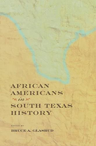 9781603442282: African Americans in South Texas History (Perspectives on South Texas, sponsored by Texas A&M University-Kingsville)