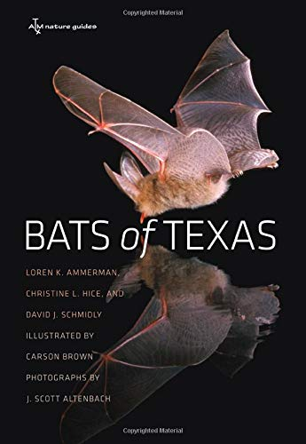 Bats of Texas (W. L. Moody Jr. Natural History Series): Ammerman, Loren K.; Hice, Christine L.; ...