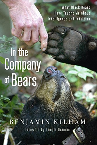 9781603585873: In the Company of Bears: What Black Bears Have Taught Me About Intelligence and Intuition