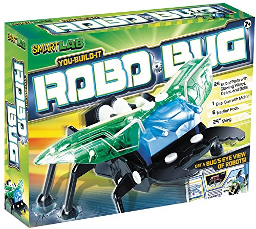 You-Build-It Robo Bug (Smart Lab) (9781603800679) by David Gordon