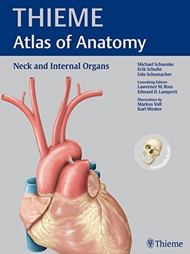 9781604062885: Neck and Internal Organs (THIEME Atlas of Anatomy)