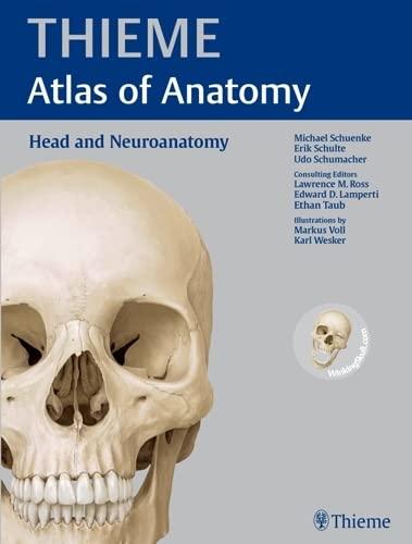 9781604062908: Head and Neuroanatomy (THIEME Atlas of Anatomy)