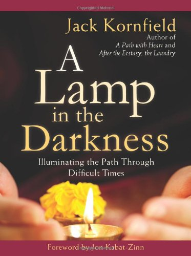 9781604074482: A Lamp in the Darkness: Illuminating the Path Through Difficult Times
