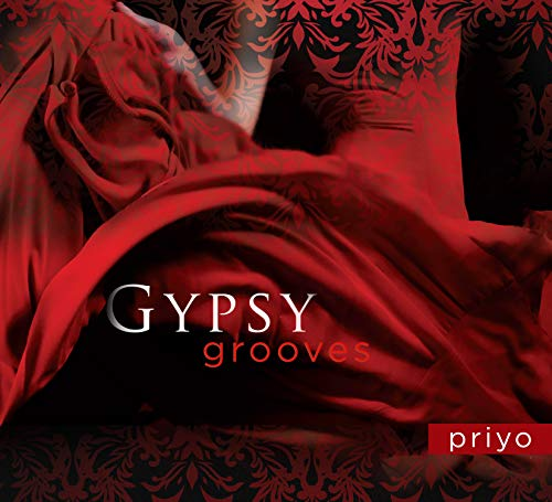 9781604078602: Gypsy Grooves