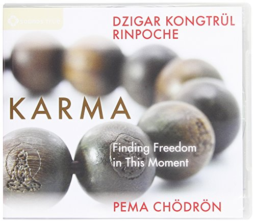Karma: Finding Freedom in This Moment: Dzigar Kongtrul Rinpoche; Chodron, Pema; Ch?dr?n, Pema