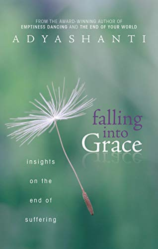9781604079371: Falling into Grace: Insights on the End of Suffering