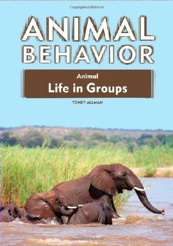 Animal Life in Groups (Animal Behavior (Library)): Toney Allman