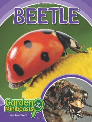 Beetle (Garden Minibeasts Up Close): Woodward, John
