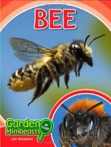 Bee (Garden Minibeasts Up Close): John Woodward