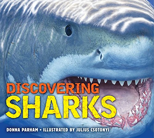 9781604336047: Discovering Sharks