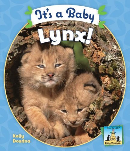 9781604530254: It's a Baby Lynx! (SandCastle: Baby Mammals)