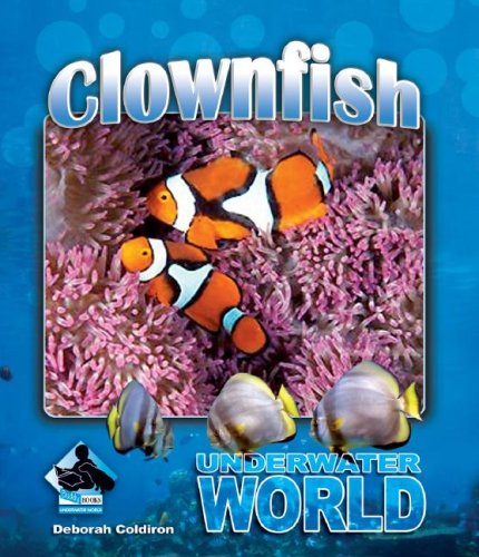 9781604531305: Clownfish (Underwater World)