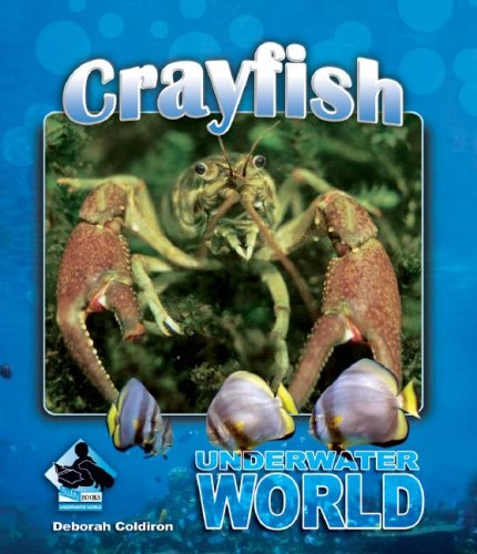 9781604531312: Crayfish (Underwater World Set 2)