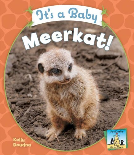 It's a Baby Meerkat! (Sandcastle: Baby African Animals) (1604531576) by Kelly Doudna