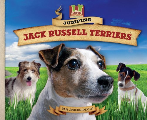 9781604536171: Jumping Jack Russell Terriers (Dog Daze)