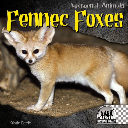 Fennec Foxes (Nocturnal Animals): Kristin Petrie