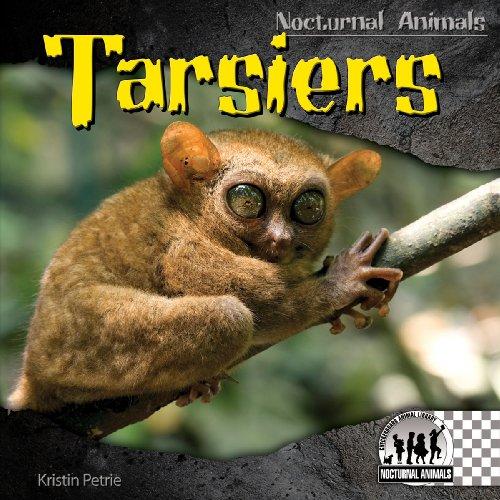 9781604537390: Tarsiers (Nocturnal Animals)