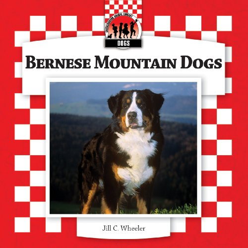 Bernese Mountain Dogs (Checkerboard Animal Library: Dogs) (1604537817) by Wheeler, Jill C.