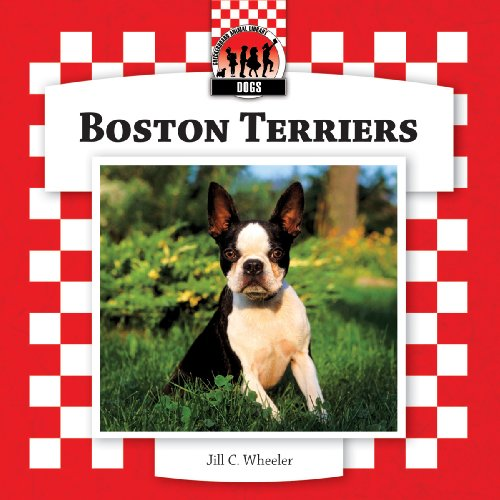 Boston Terriers (Dogs): Jill C. Wheeler