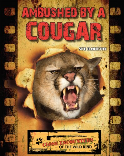 9781604539288: Ambushed by a Cougar (Close Encounters of the Wild Kind)