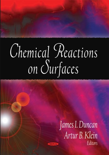9781604568981: Chemical Reactions on Surfaces