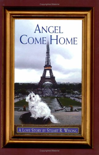 Angel Come Home: Wisong, Stuart R.