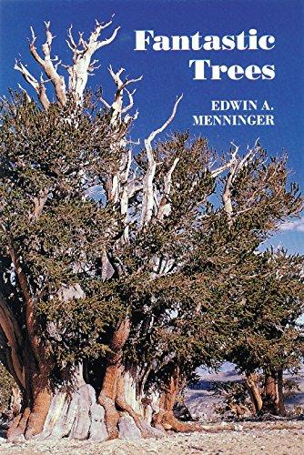 Fantastic Trees: Menninger, Edwin