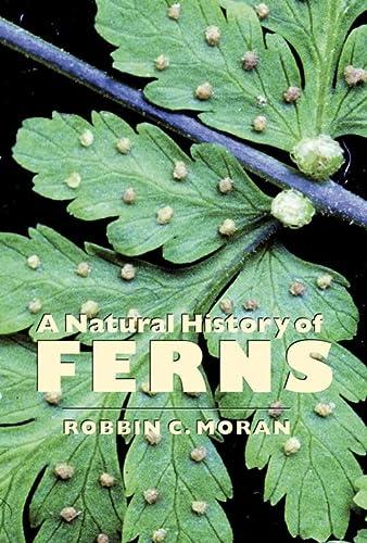 A Natural History of Ferns: Moran, Robbin C.