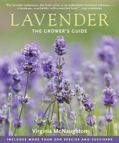 Lavender: The Grower's Guide: McNaughton, Virginia